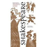 Shakespeare: 12 převyprávěných her v historických souvislostech - Kniha