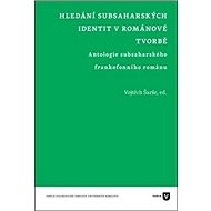 Hledání subsaharských identit v románové tvorbě: Antologie subsaharského frankofonního románu - Kniha
