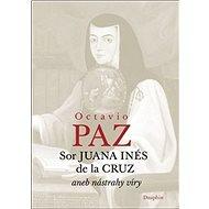 Sor Juana Inés de la Cruz: aneb nástrahy víry - Kniha
