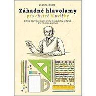 Záhadné hlavolamy pro chytré hlavičky: Řešení hlavolamů jako cesta k logickému mysšlení pro všechny  - Kniha