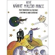 Nový návrat malého prince - Kniha