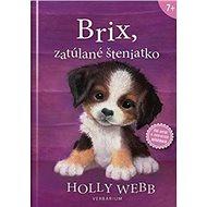 Brix, zatúlané šteniatko - Kniha