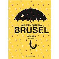 Jak jsem potkala Brusel