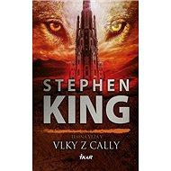 Vlky z Cally: Temná veža V - Kniha