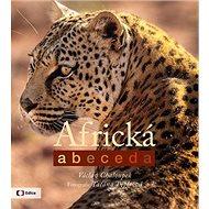 Africká abeceda - Kniha