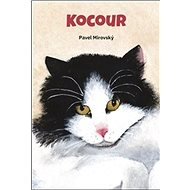 Kocour - Kniha