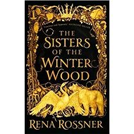 The Sisters of the Winter Wood - Kniha