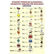 Stručný prehľad slovenskej gramatiky (nielen) pre školákov - Kniha