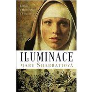 Iluminace: Román o Hildegardě z Bingenu