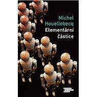 Elementární částice - Kniha