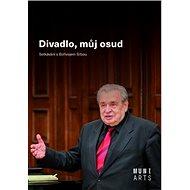 Divadlo, můj osud: Setkávání s Bořivojem Srbou - Kniha