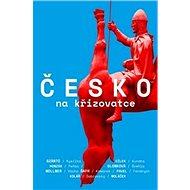 Česko na křižovatce - Kniha