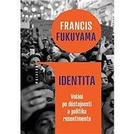 Identita: Volání po důstojnosti a politika resentimentu - Kniha