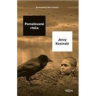 Pomaľované vtáča - Kniha