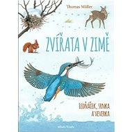 Zvířata v zimě: Ledňáček, srnka a veverka - Kniha