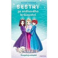 Sestry ze sněhového království Kouzelný vodopád: Sestry ze sněhového království