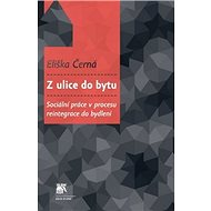 Z ulice do bytu: Sociální práce v procesu reintegrace do bydlení - Kniha