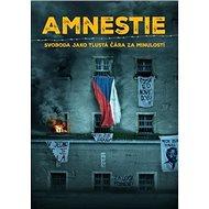 Amnestie: Svoboda jako tlustá čára za minulostí - Kniha