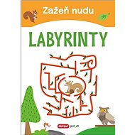 Zažeň nudu Labyrinty - Kniha