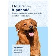 Od strachu k pohodě: Zbavte svého psa obav z veterináře, návštěv, ohňostrojů…