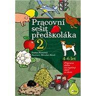 Pracovní sešit předškoláka 2: Příprava dítěte na úspěšný start ve škole - Kniha