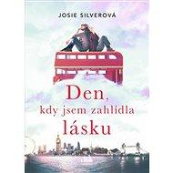 Den, kdy jsem zahlídla lásku - Kniha