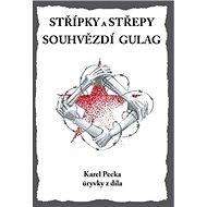 Střípky a střepy Souhvězdí Gulag - Kniha