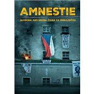 Amnestie - Kniha