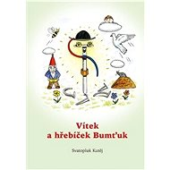 Vítek a hřebíček Bumťuk - Kniha