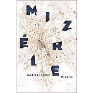 Mizérie - Kniha