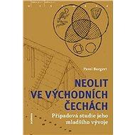 Neolit ve východních Čechách: Případová studie jeho mladšího vývoje - Kniha