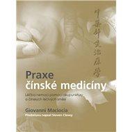 Praxe čínské medicíny - Kniha