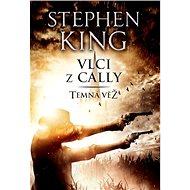 Vlci z Cally: Temná věž V. - Kniha
