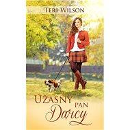 Úžasný pan Darcy - Kniha
