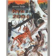 Rys za 200 litrů - Kniha