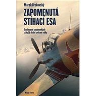 Zapomenutá stíhací esa: Osudy osmi spojeneckých stíhačů druhé světové války - Kniha