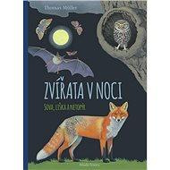 Zvířata v noci: Sova, liška a netopýr - Kniha