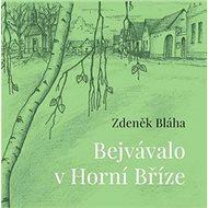 Bejvávalo v Horní Bříze - Kniha