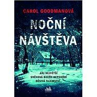 Noční návštěva: Ani největší sněhová bouře nepohřbí děsivá tajemství - Kniha