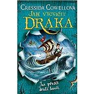 Jak vycvičit draka: Jak přežít dračí bouři - Kniha