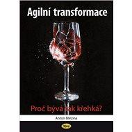 Agilní transformace: Proč bývá tak křehká? - Kniha