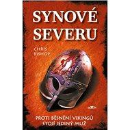 Synové severu: Proti běsnění Vikingů stojí jediný muž - Kniha