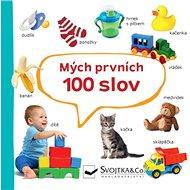 Mých prvních 100 slov - Kniha