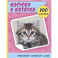 Kočičky a koťátka: Plakát a 100 samolepek - Kniha