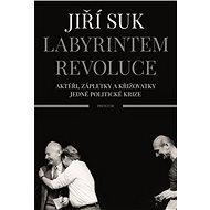 Labyrintem revoluce: Aktéři, zápletky a křižovatky jedné politické krize - Kniha