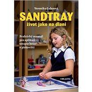 Sandtray: Život jako na dlani - Kniha