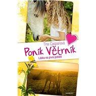 Poník Větrník Láska na první pohled - Kniha