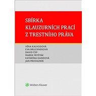 Sbírka klauzurních prací z trestního práva - Kniha
