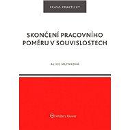 Skončení pracovního poměru v souvislostech - Kniha