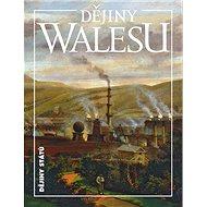 Dějiny Walesu - Kniha